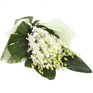 Fascio funebre Orchidea Bianca