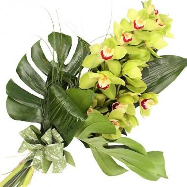 Ramo di Orchidea per Lutto